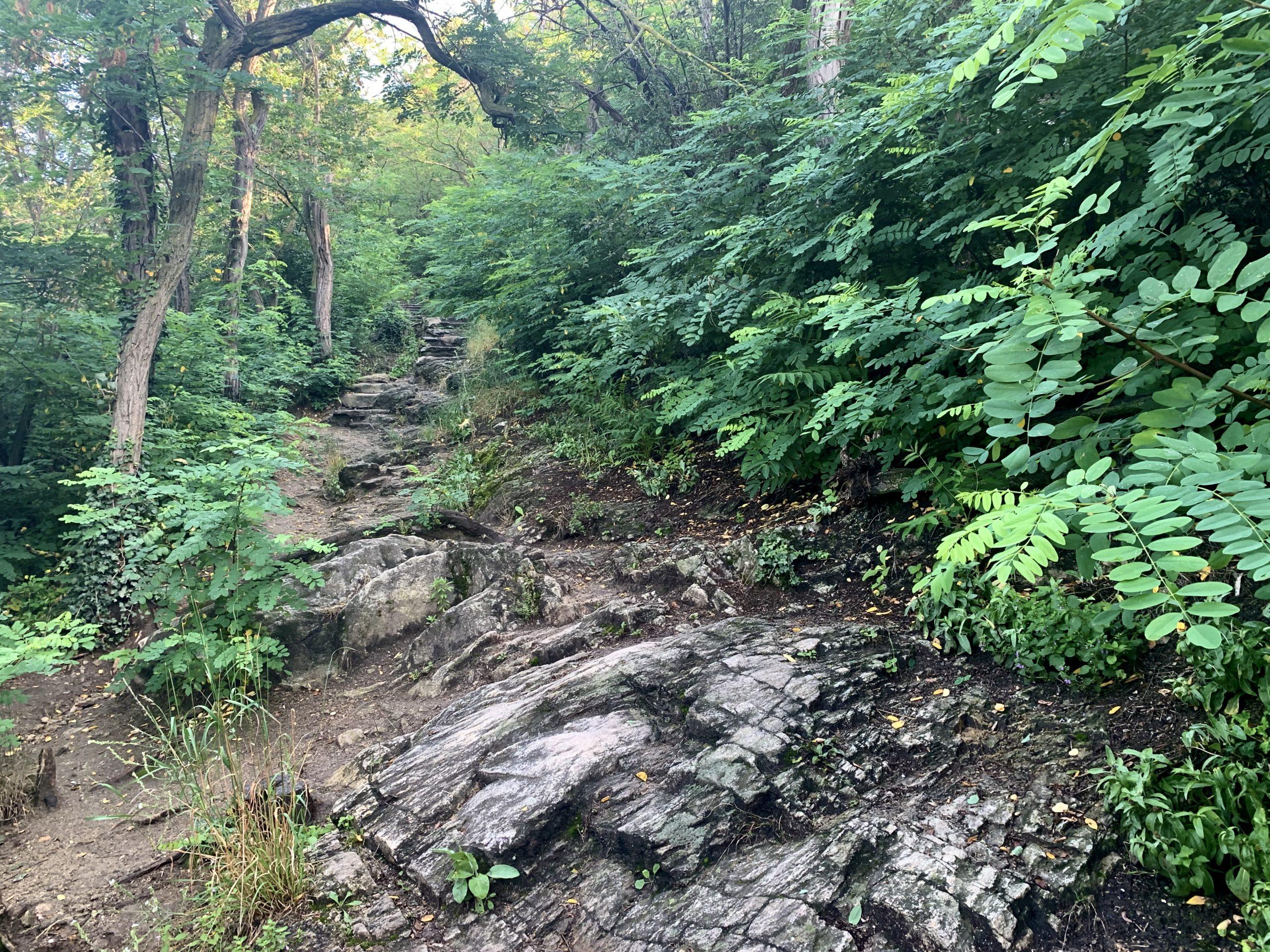felsiger Weg auf die Ruine Dürnstein