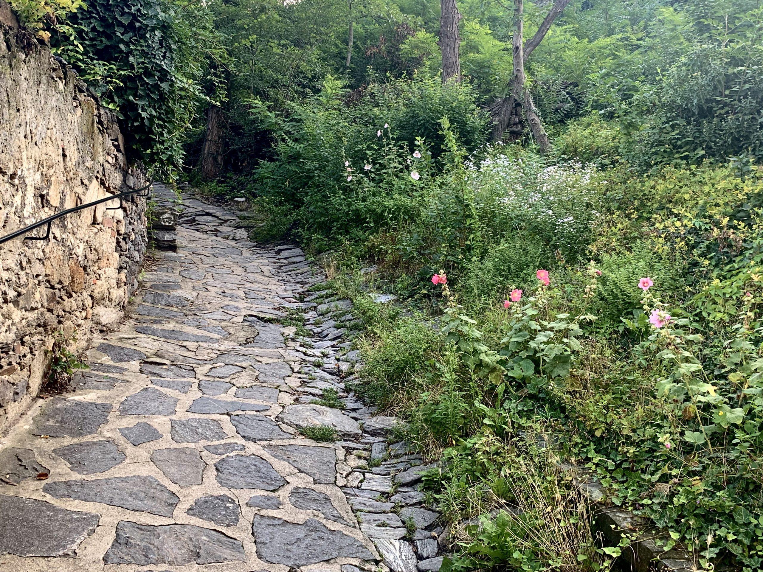 Ruinenweg in Dürnstein