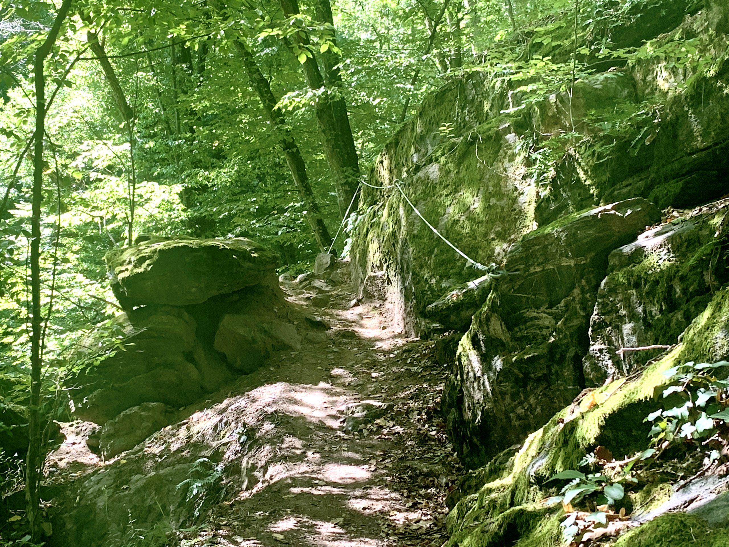 Weitenberggraben am Welterbesteig am Weg nach Weissenkirchen