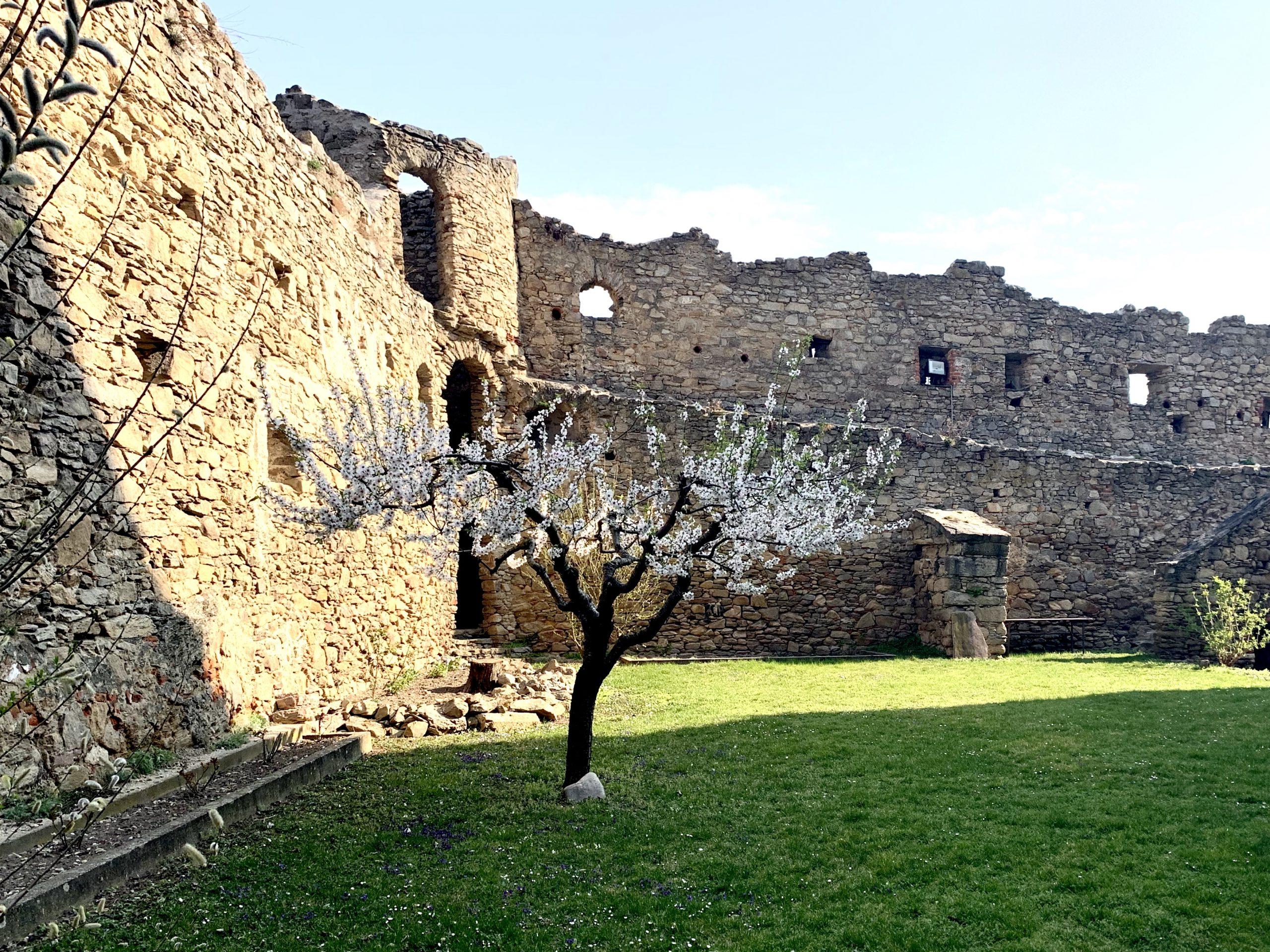 Wehrmauer der Pfarrkirche Weißenkirchen